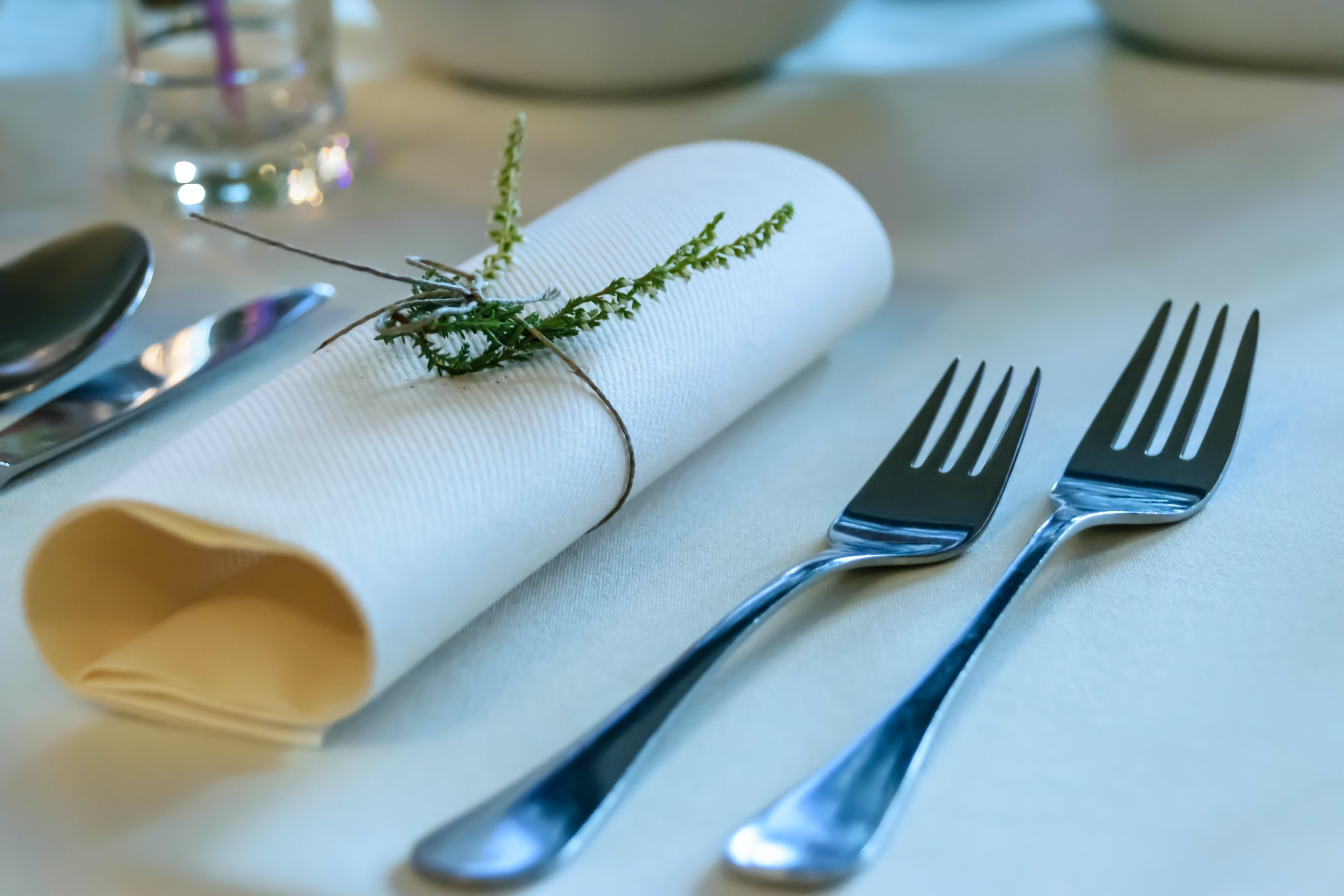 Stainless Steel Fork Beside Rolled Paper Towel With Parsley on Top