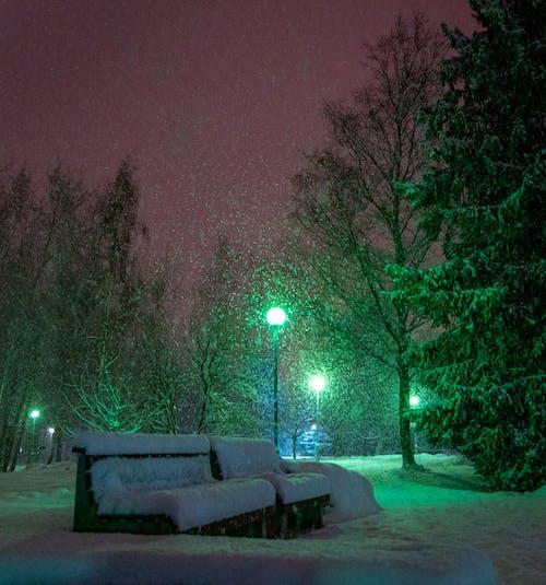 Kostenloses Stock Foto zu abend, bank, kalt, schnee