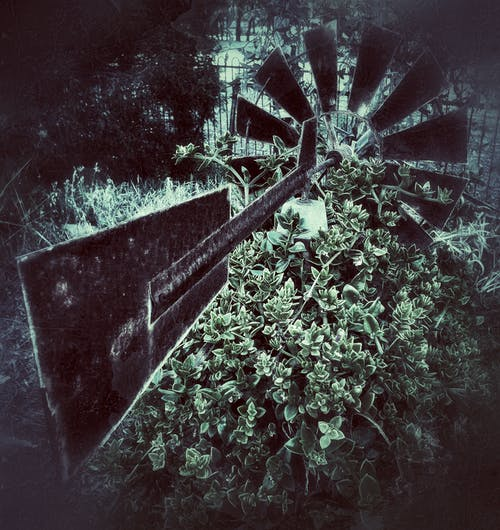 Foto profissional grátis de cata-vento, drama, escultura de jardim, moinho de vento