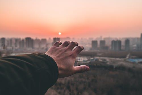 Gratis stockfoto met bereiken, dageraad, hand, macro