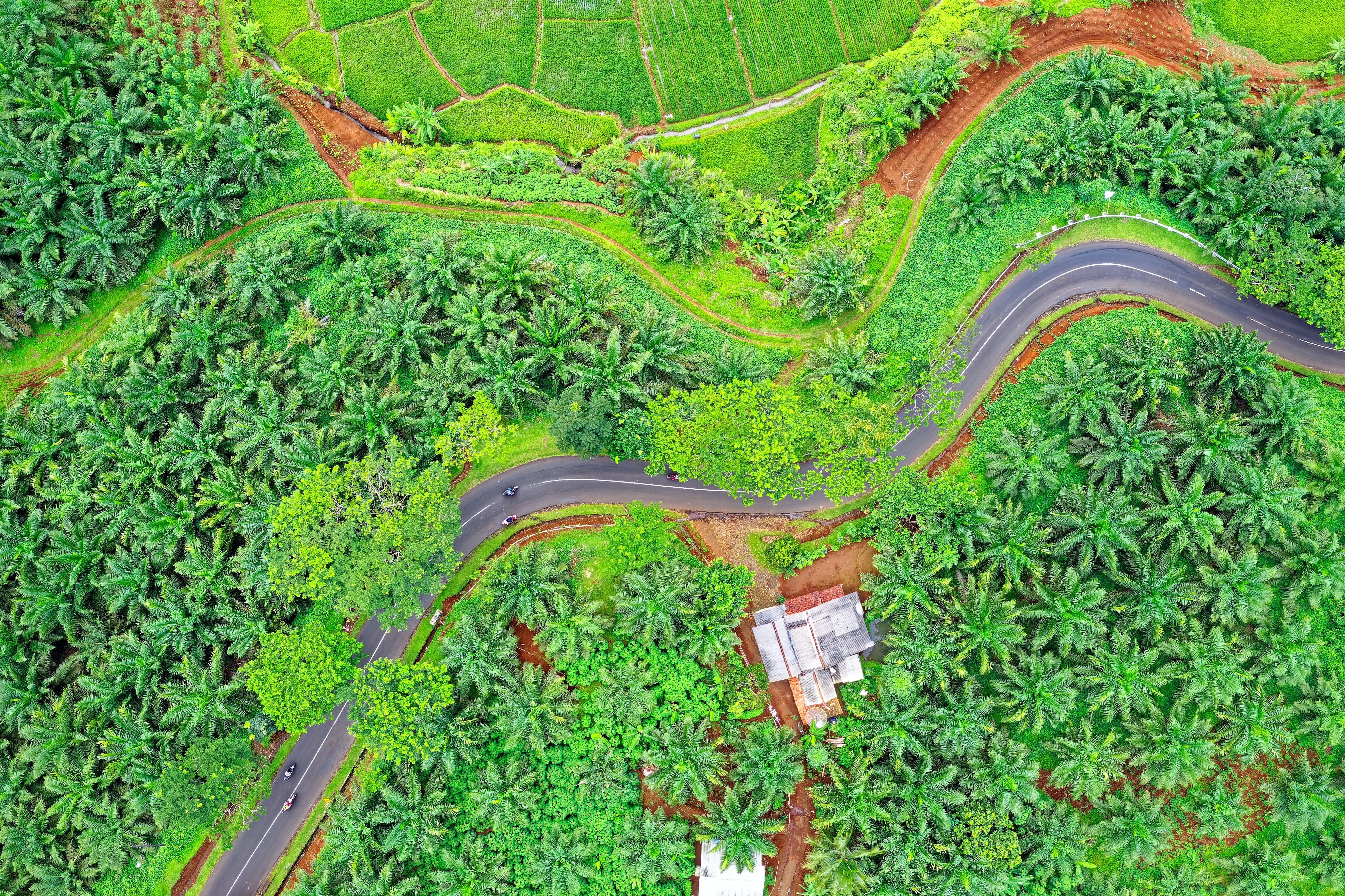 Aerial Shot Of Rural Area