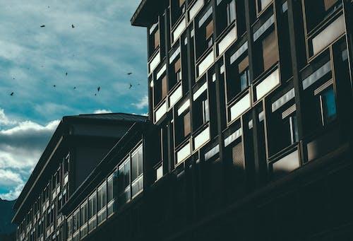 Бесплатное стоковое фото с архитектура, гостиница, грязь, здание