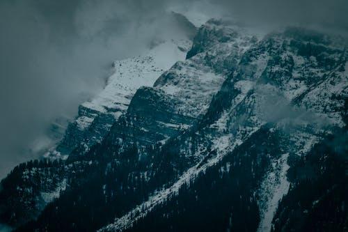 Darmowe zdjęcie z galerii z drzewa, góra, jasny, krajobraz