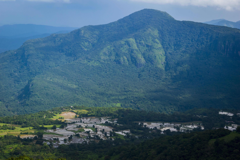Photos gratuites de montagnes, rizières