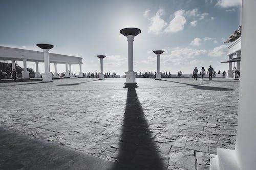アウトドア, 影, 日光, 発見の無料の写真素材
