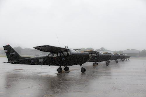 機翼, 航空器 的 免費圖庫相片