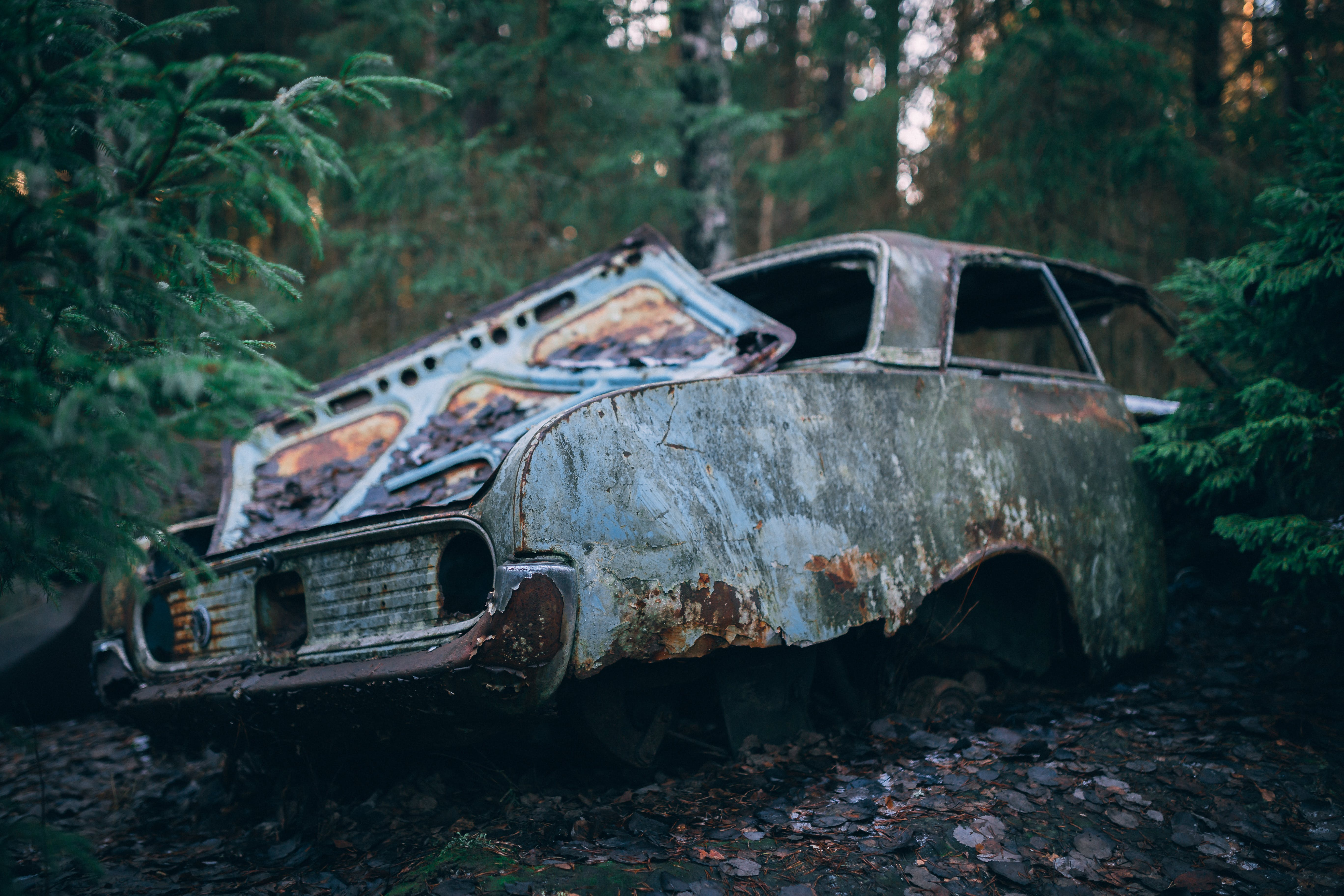 Abandoned Vehicle On Forest