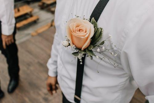 Δωρεάν στοκ φωτογραφιών με άνδρας, ανθίζω, άνθος, λουλούδι