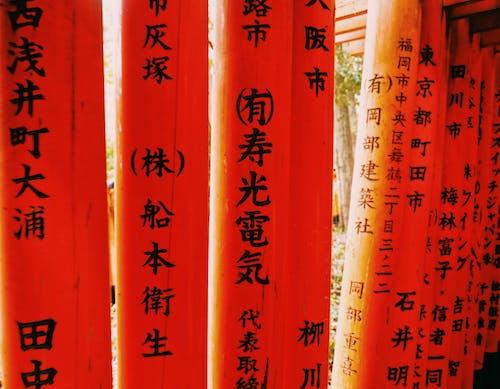 Δωρεάν στοκ φωτογραφιών με bambo, kyoto, Ασία, γιαπωνέζικη κουλτούρα