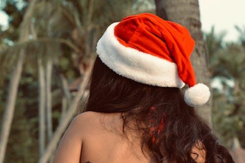 Foto profissional grátis de cartão de natal, decoração de Natal, feliz natal, fundo natal