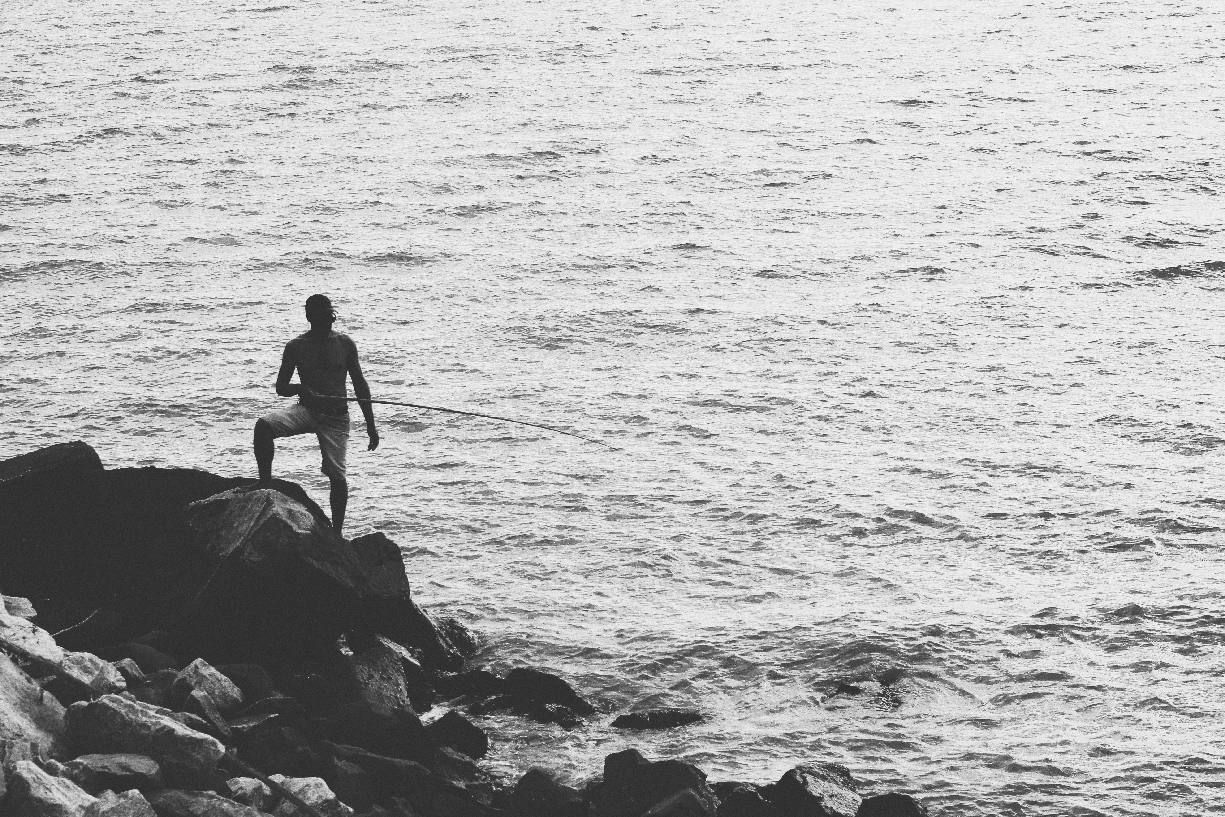 Free stock photo of black and white, fish, man at the sea