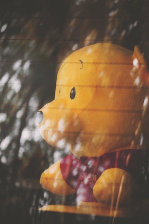 คลังภาพถ่ายฟรี ของ ของเล่น, ของเล่นตุ๊กตา, ตุ๊กตา, ตุ๊กตาหมี