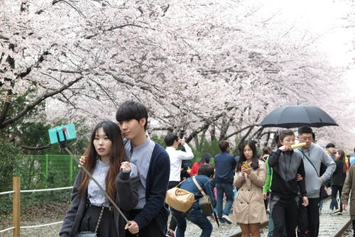 Foto d'estoc gratuïta de Corea