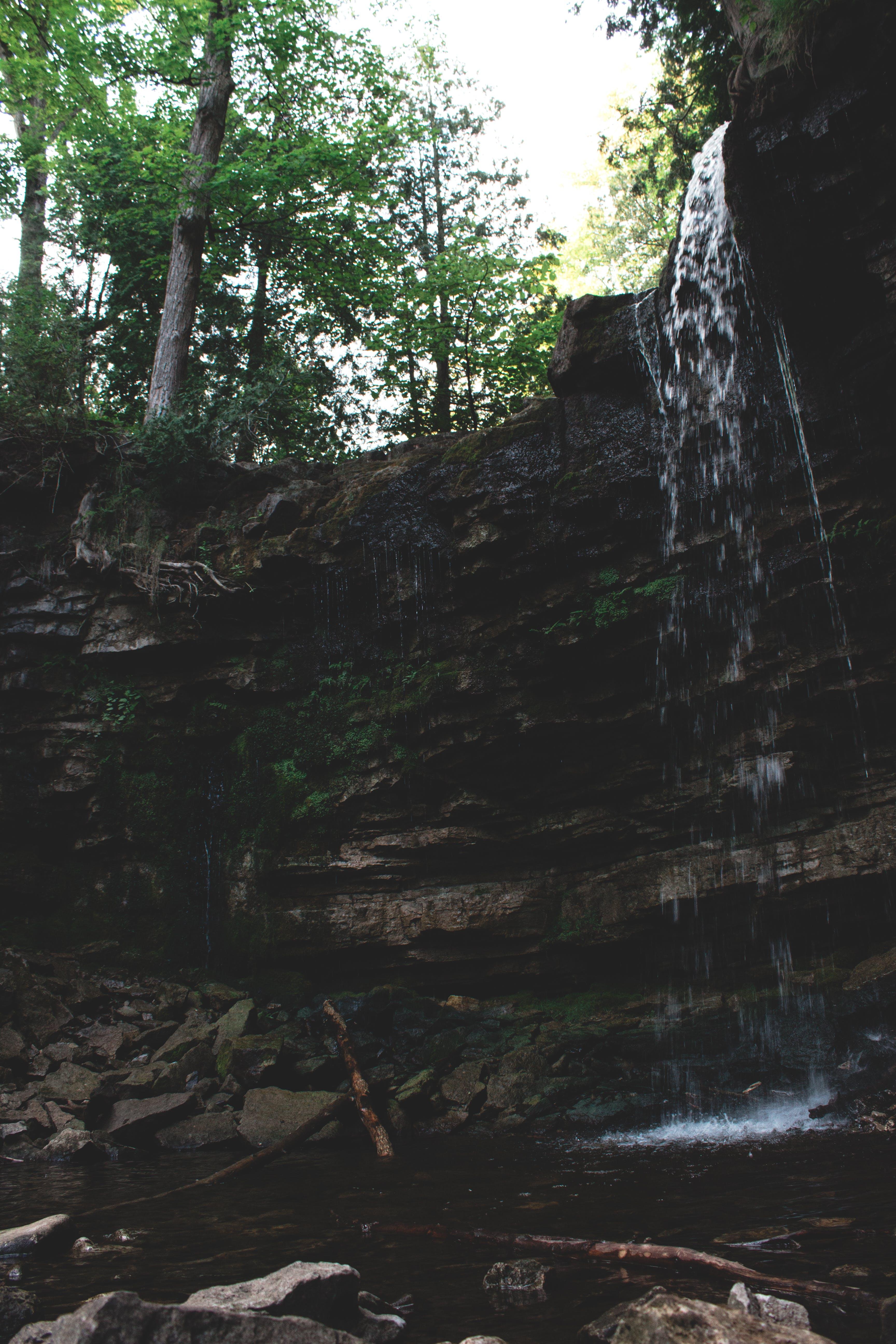 Fotos de stock gratuitas de agua, aventura, bosque, cascada