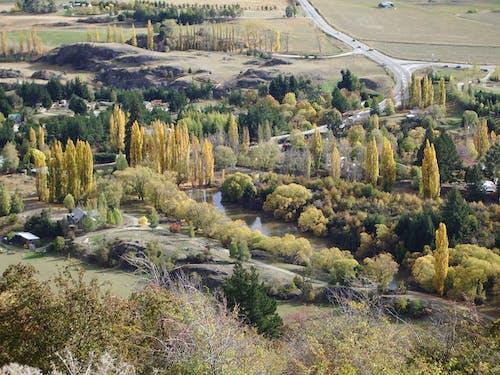 Kostenloses Stock Foto zu ackerland, bauernhof, bäume, grün