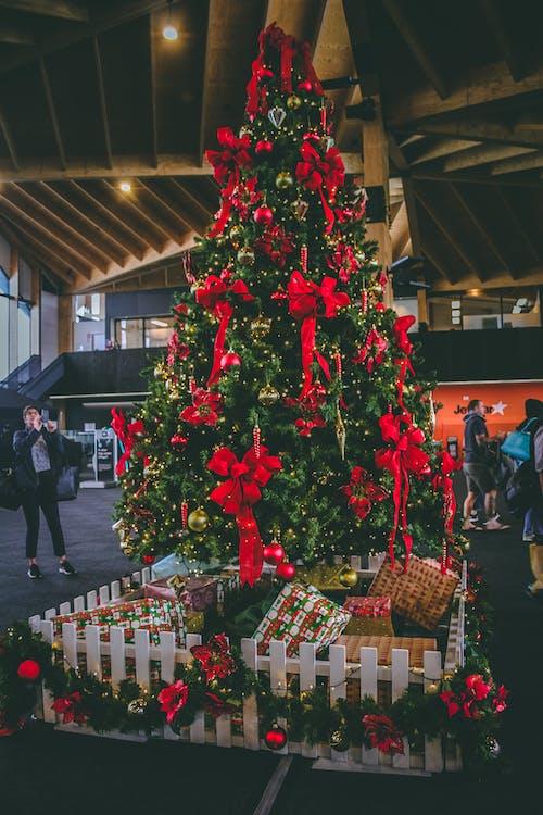 Foto stok gratis berfokus, berkonsentrasi, bola natal, dalam ruangan
