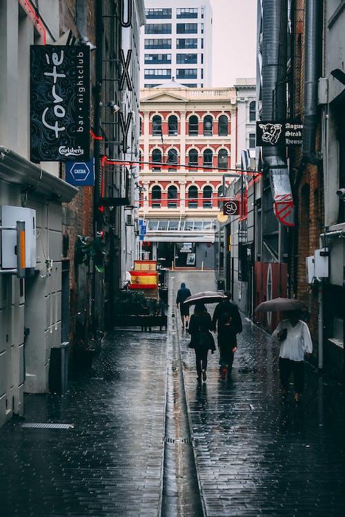 Foto stok gratis Arsitektur, bangunan, hujan, jalan