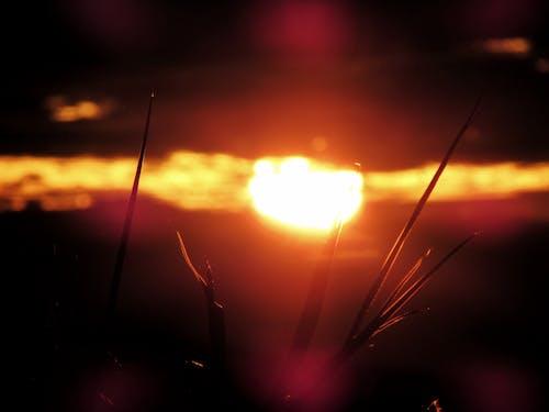 Imagine de stoc gratuită din arderea cerului, cerul de aur, răsărit de soare