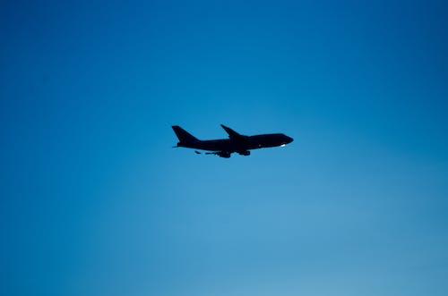 天空, 藍天, 藍色 的 免費圖庫相片