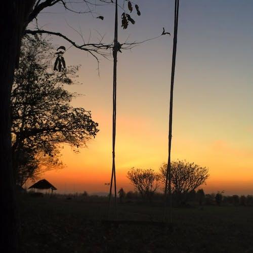 gün batımı, ตะวันตก ดิน, ฤดู หนาว, หมอก içeren Ücretsiz stok fotoğraf