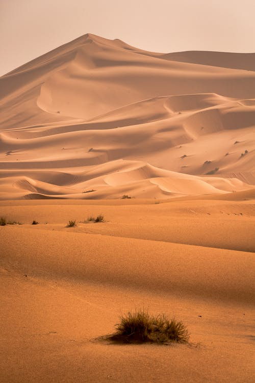 arena, árido, Desierto