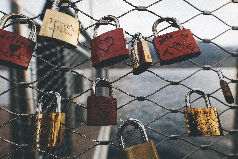 Padlocks Locked On Chain Link Fence