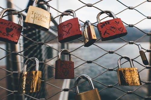 保全, 愛的掛鎖, 掛鎖, 籬笆 的 免費圖庫相片