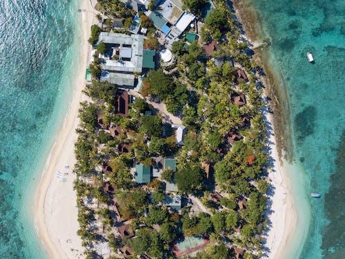 Foto profissional grátis de à beira-mar, aerofotografia, água, árvores