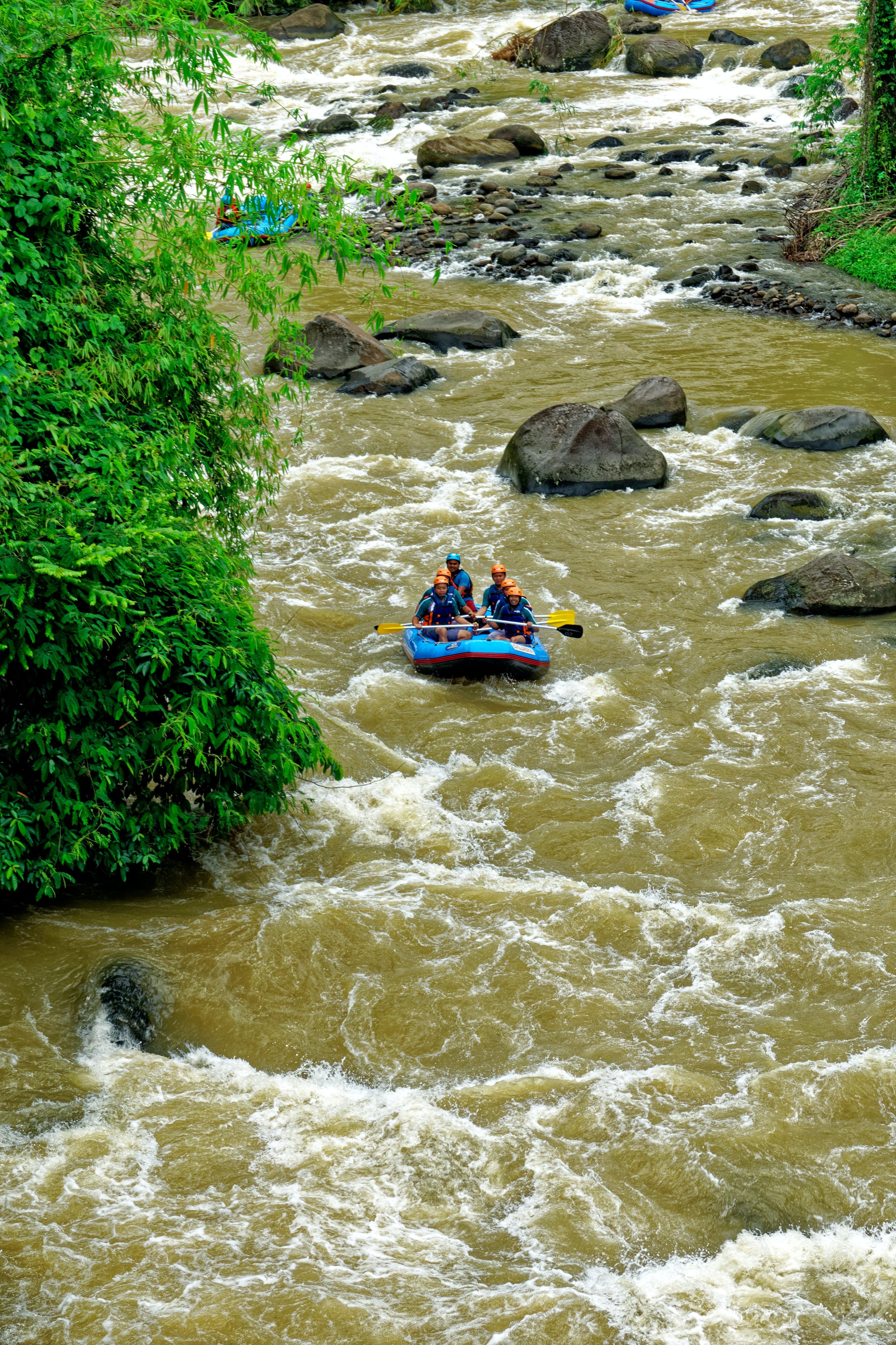 Foto d'estoc gratuïta de aventura, barca, corrent, diversió