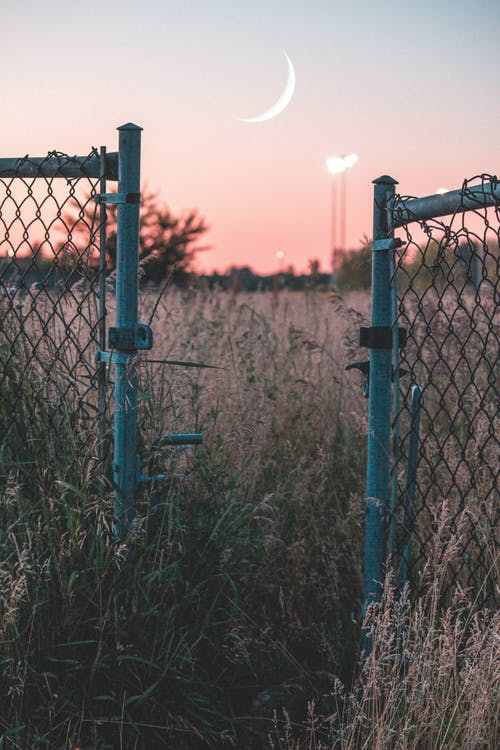 Free stock photo of blue sky, field, gate, golden hour