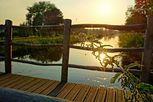 Бесплатное стоковое фото с вода, водный путь, деревянный мост, завод