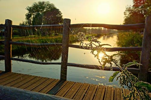 Free stock photo of bridge, bridge railing, glow