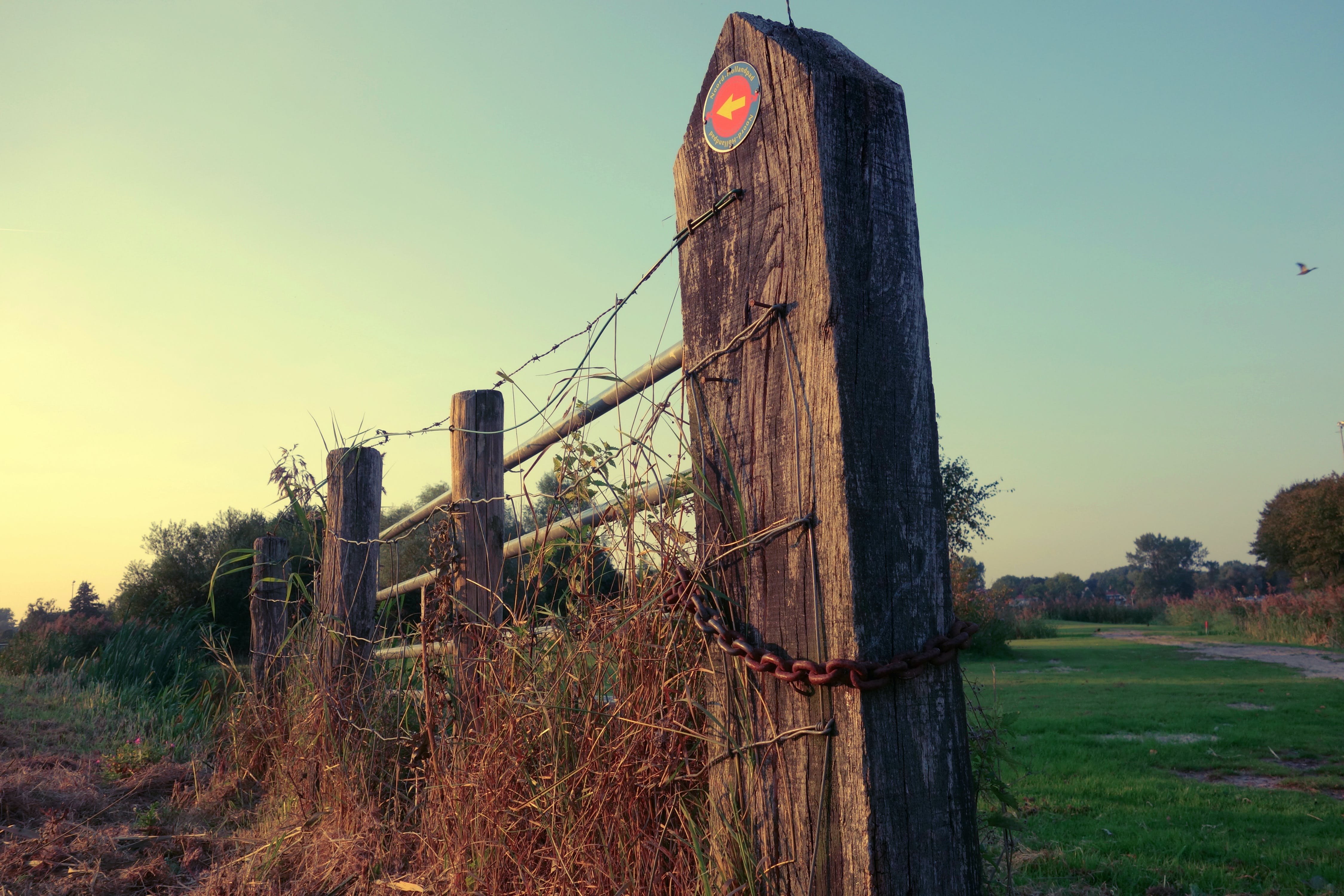 Free stock photo of landscape, arrow, fence, chain