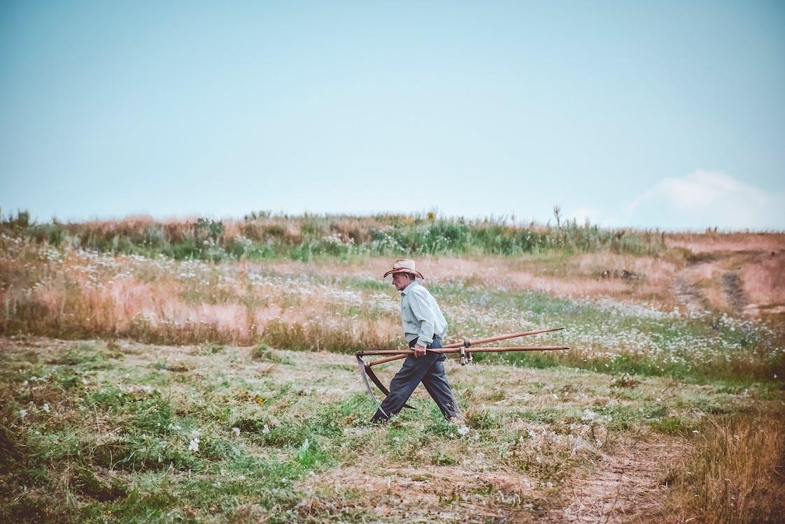 Man Walking On Farm