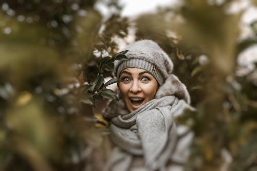 Foto stok gratis berfokus, berkonsentrasi, cute, dingin