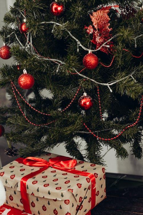 Brown Gift Box Under Green Christmas Tree