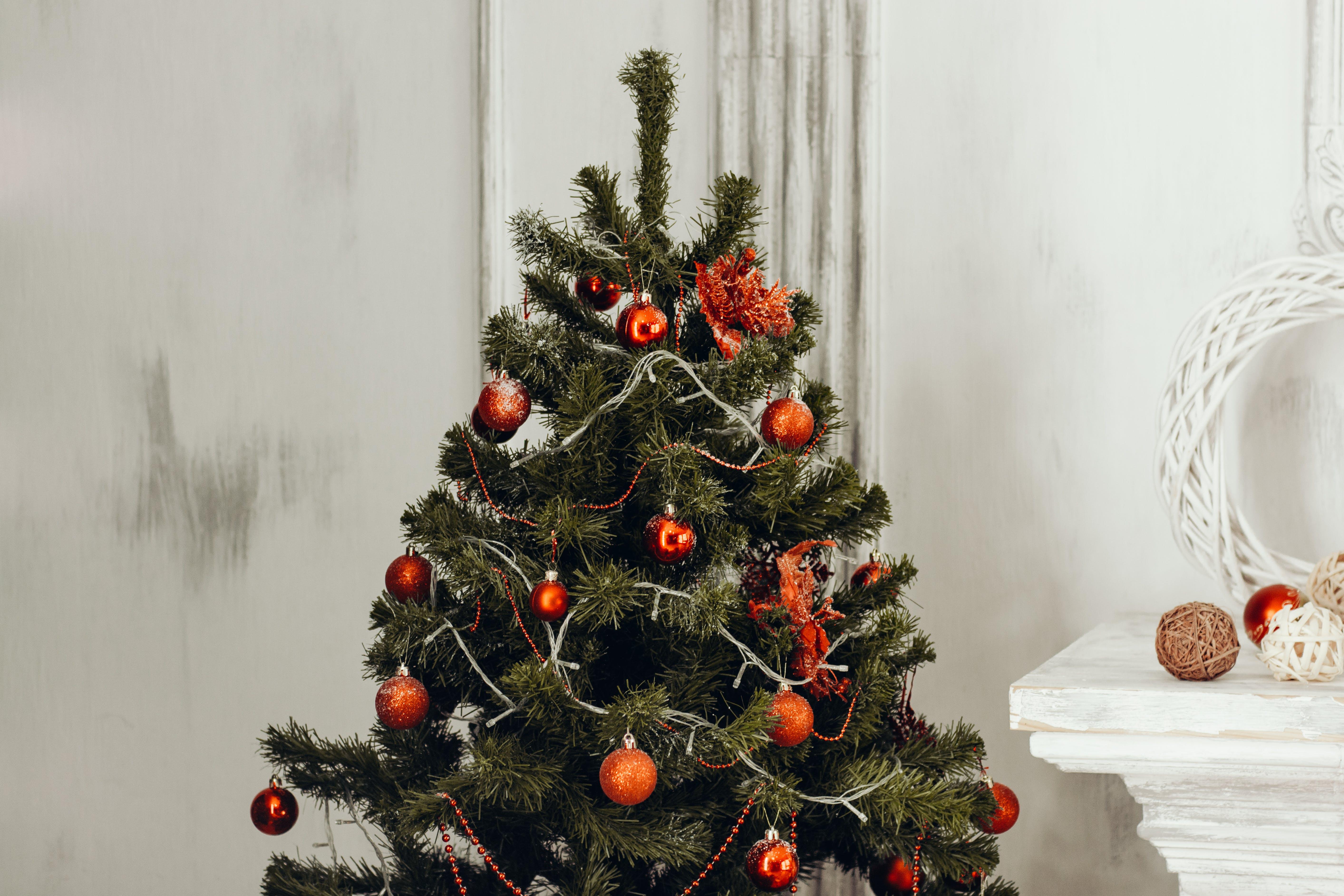 Kostenloses Stock Foto zu dekor, feier, weihnachten, weihnachtsbaum