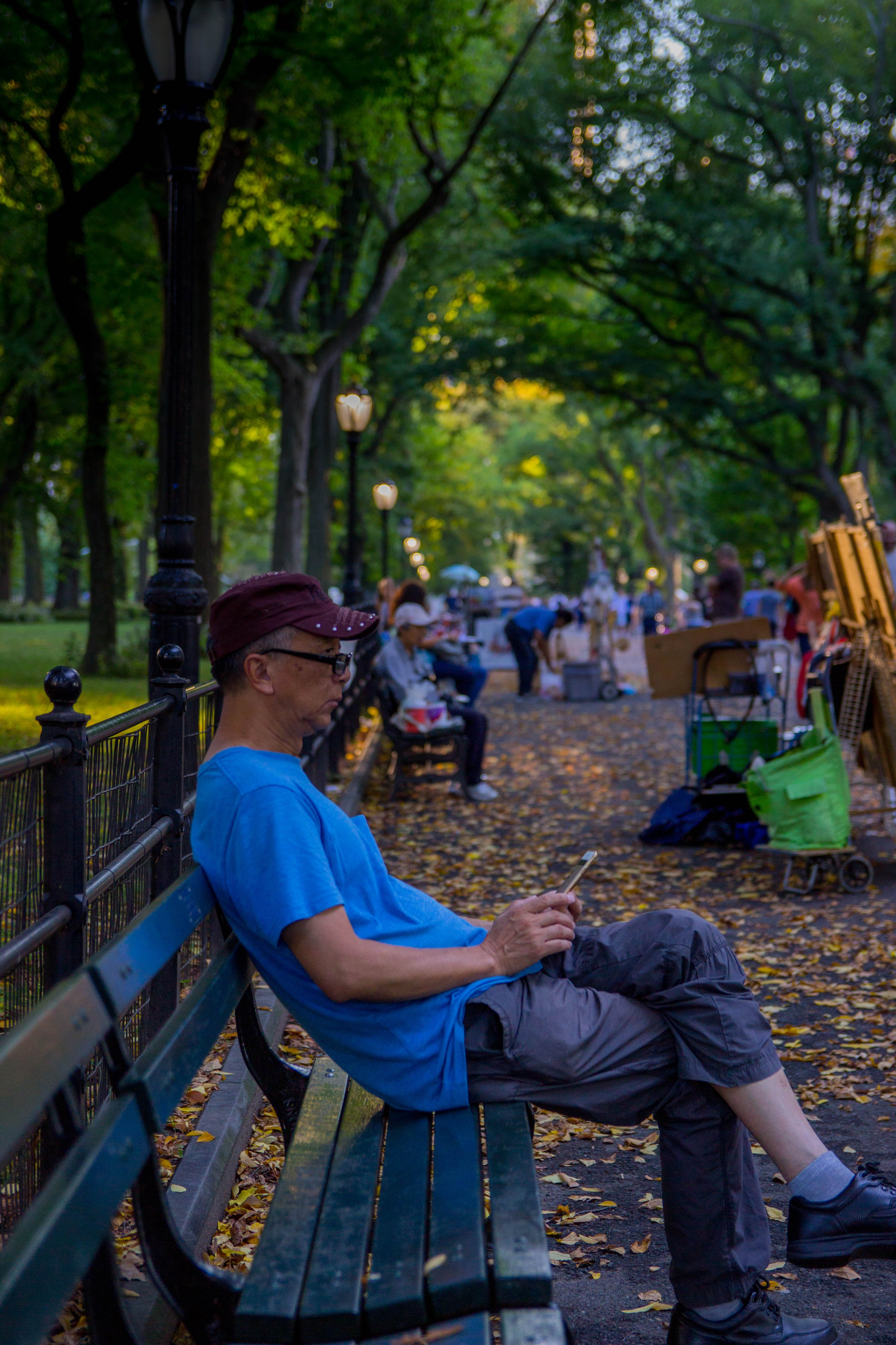 Free stock photo of central park, lonely
