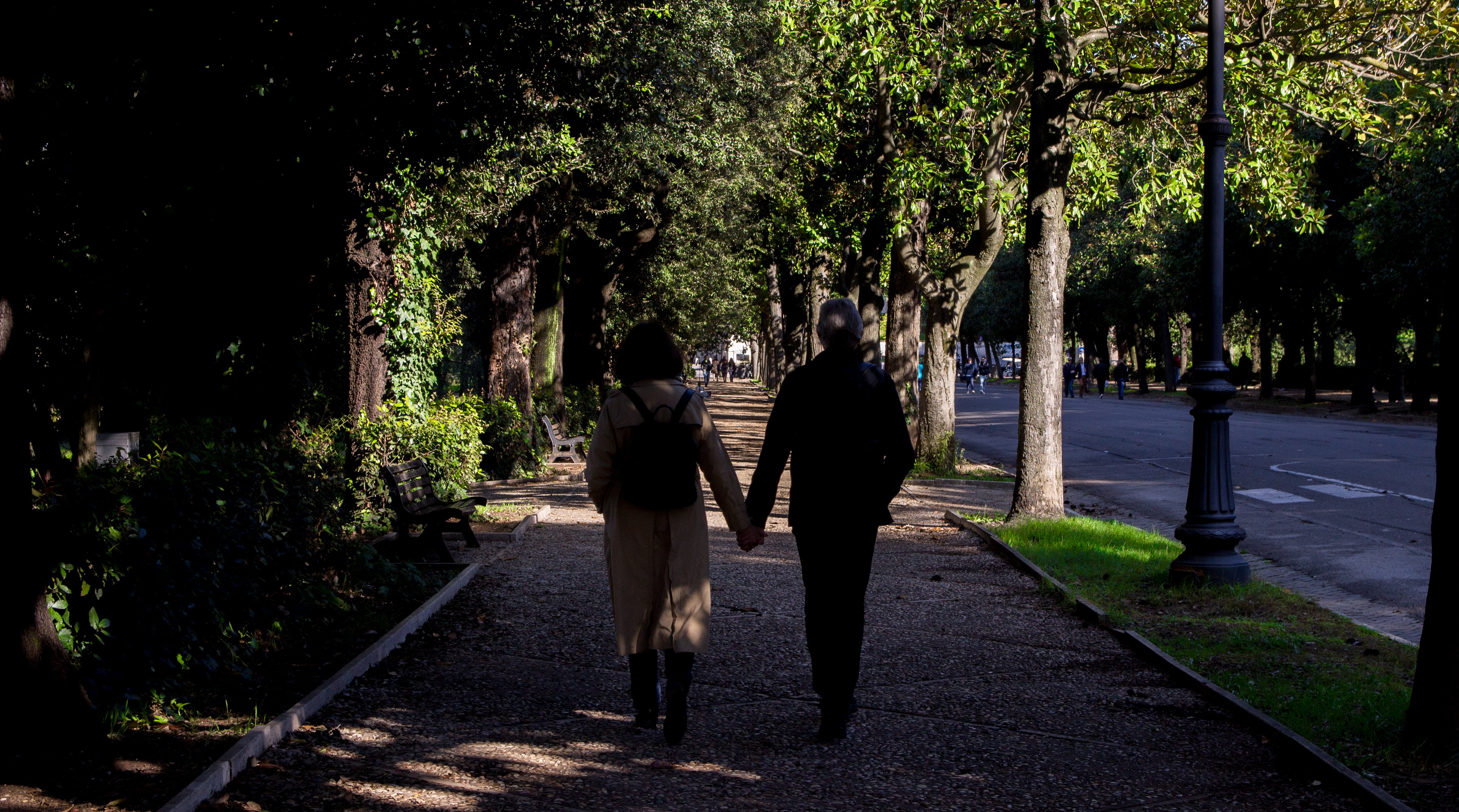 Free stock photo of lovers, old