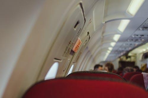 Immagine gratuita di aereo, aereo a reazione, aeroplano, boeing