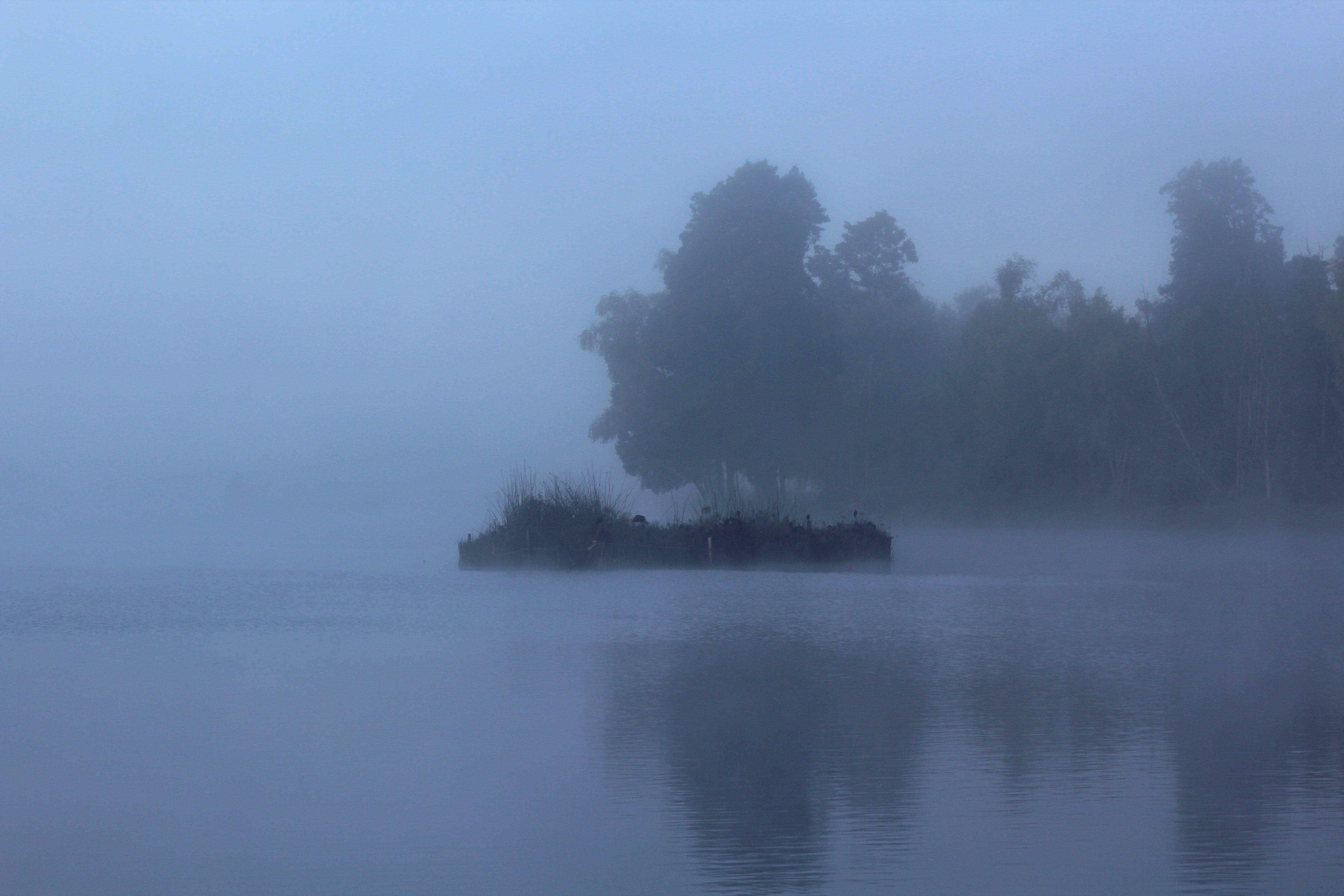Free stock photo of fog, lagoon, landscape, sunrise