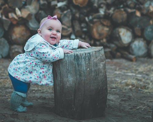 Toddler in White and Pink Jacket Standing Beside Wood Log