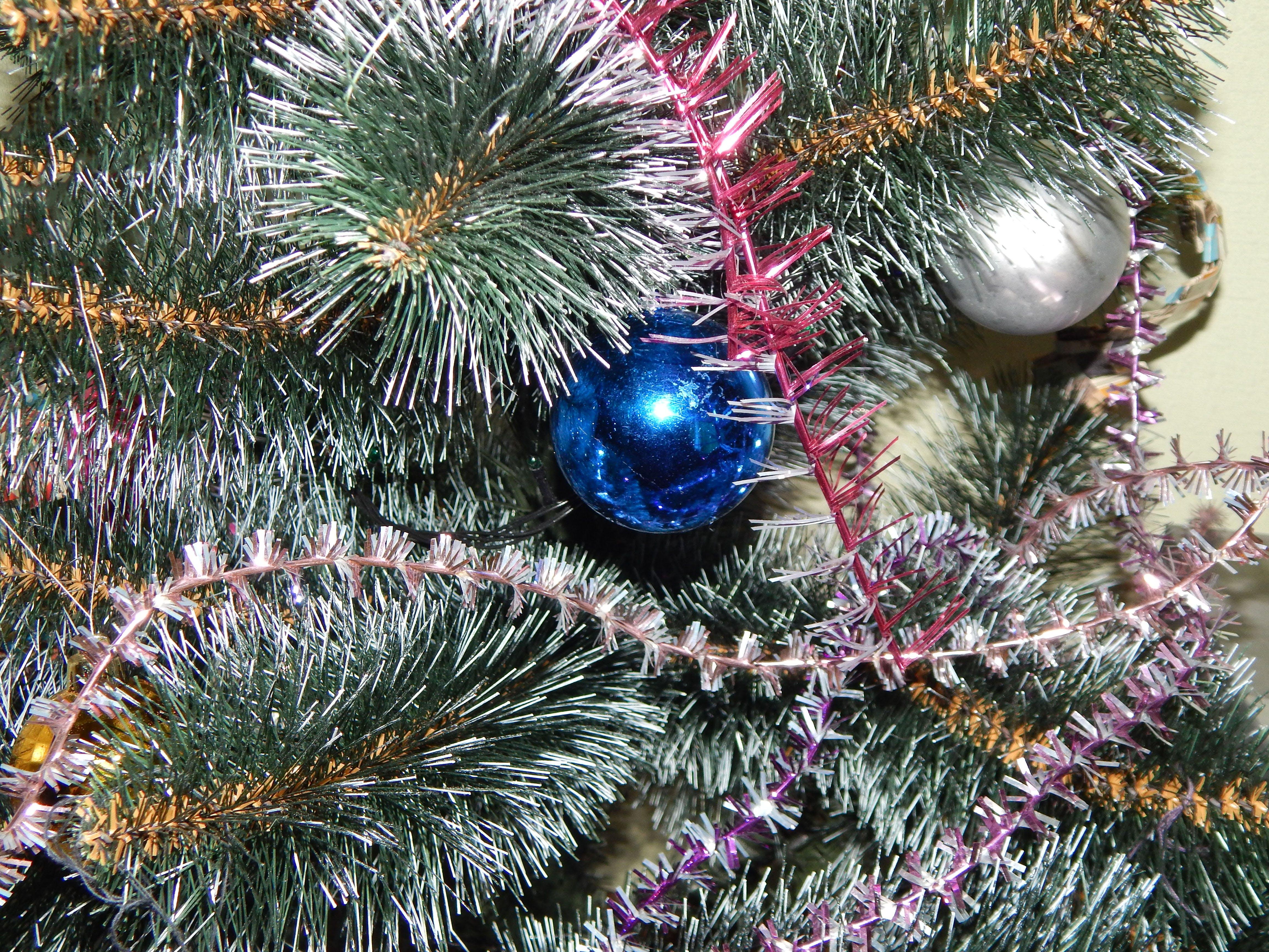 Free stock photo of background, cap, christmas, decorating