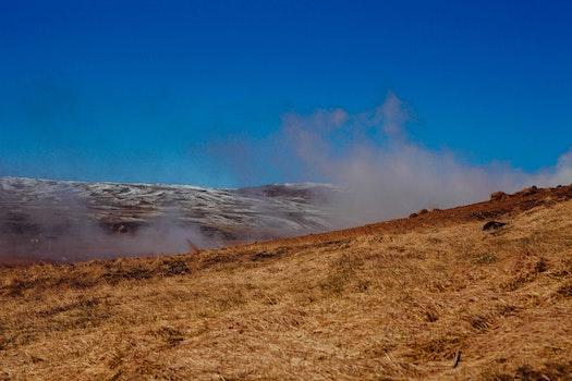 Free stock photo of grass, smoke, smoking, steam