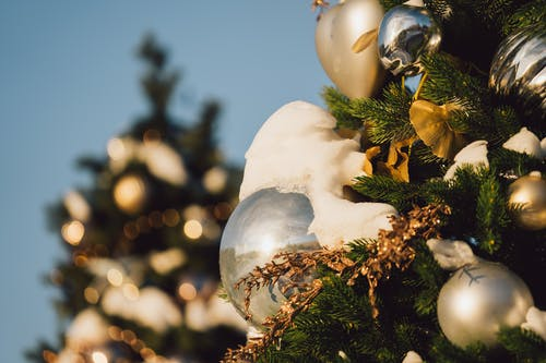 Free stock photo of christmas, christmas balls, christmas decorations, green fern
