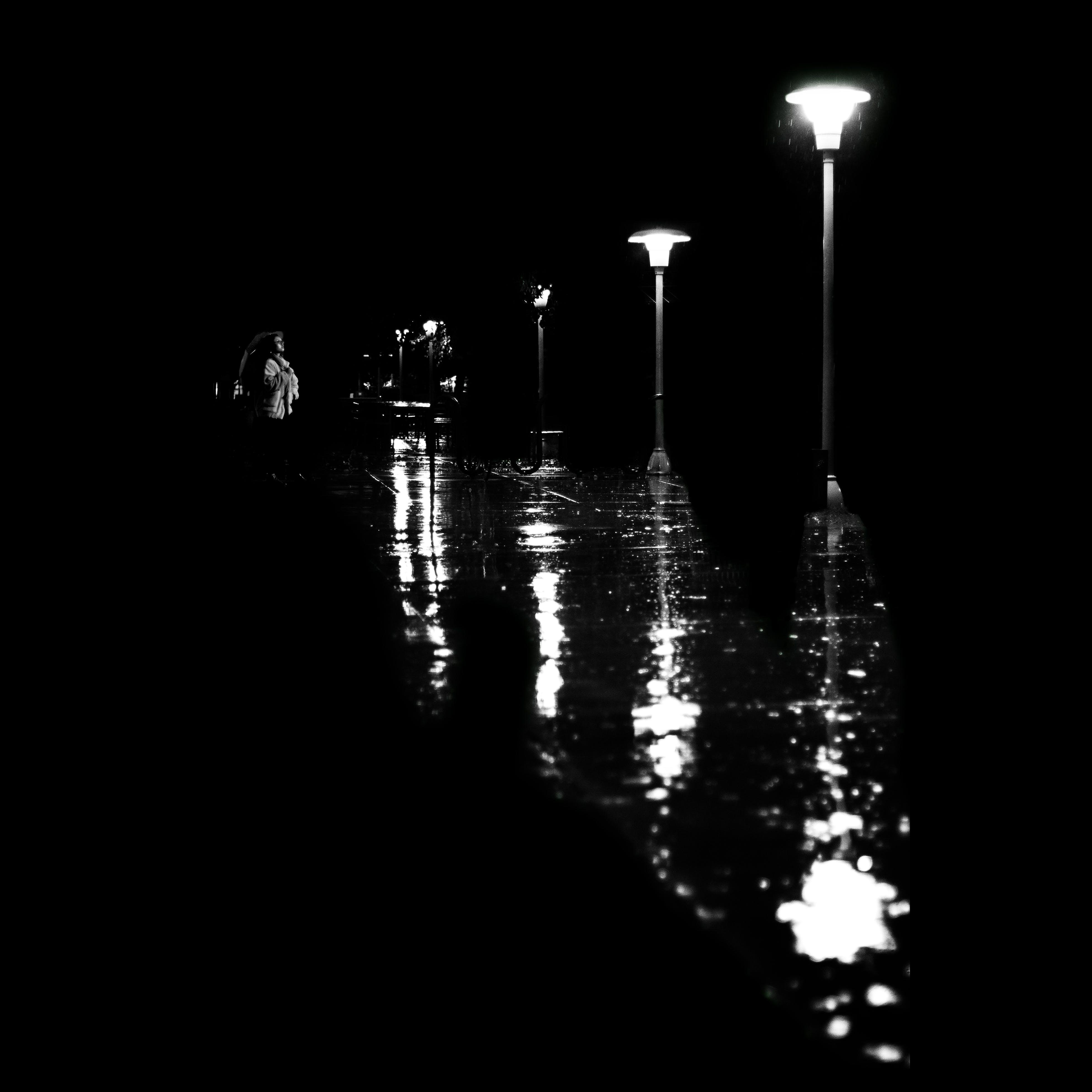 Kostenloses Stock Foto zu nach dem regen, nacht, nachtleben, regenschirm