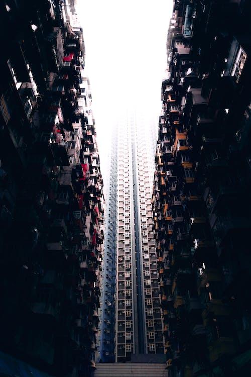 Безкоштовне стокове фото на тему «архітектура, Будівля, Гонконг»