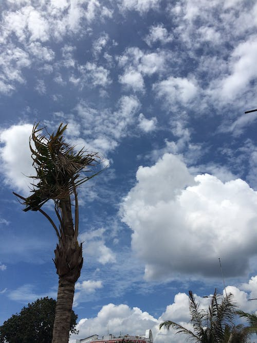 Free stock photo of blue sky, clear sky, cloud, clouds