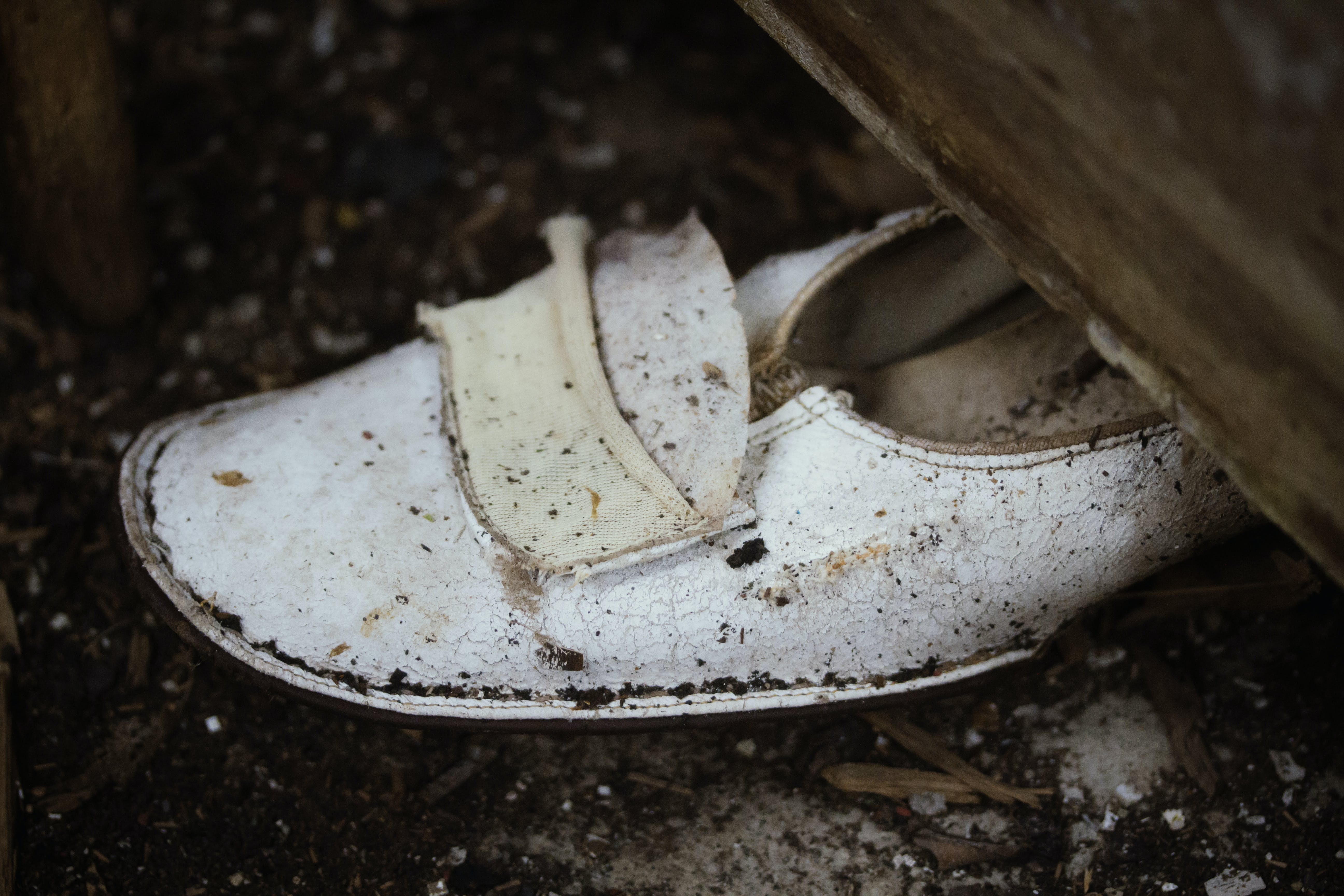 Free stock photo of abandoned, rubble, shoe, winter
