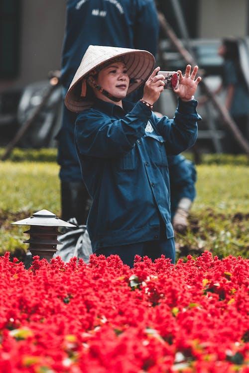 Kostenloses Stock Foto zu asiatisch, foto, vietnam